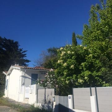 quartier résidentiel au Moulleau